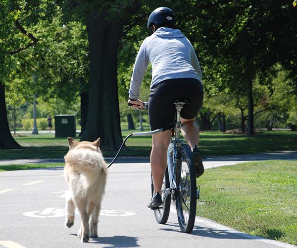 ciclismo_mdm_perros-1