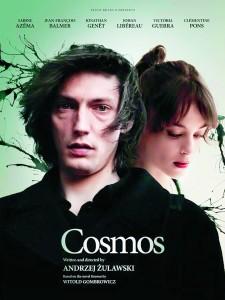Cosmos-494875372-large
