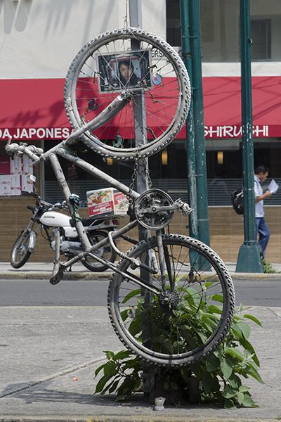 Bicicletas_blancas-3
