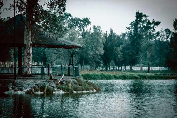 5-sabbhat-lago-del-bosque-de-aragon