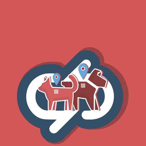 El registro de mascotas en la CDMX volvió a la agenda legislativa y será discutido a principios del próximo año. Arte, Andree Ávalos