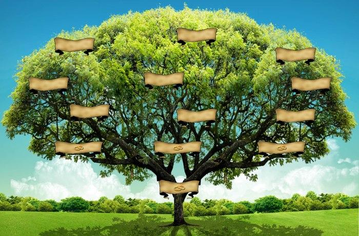 árbol Genealógico Archivos Máspormás