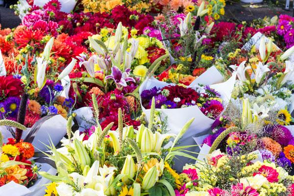 Cinco Lugares Donde Venden Flores En La Cdmx Máspormás