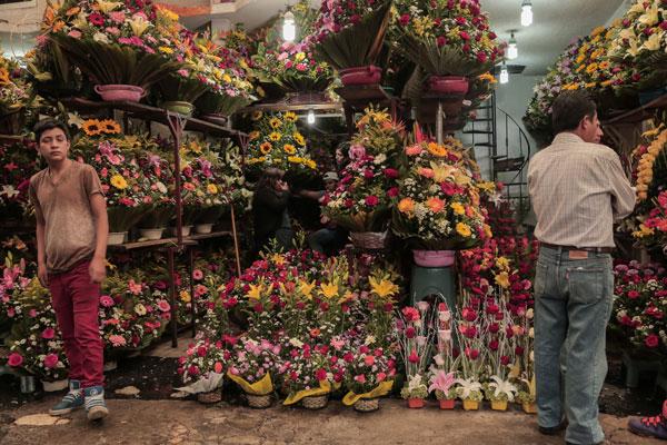 El Mercado de Jamaica es el lugar donde puedes encontrar cualquier tipo de flor o planta en cualquier época del año