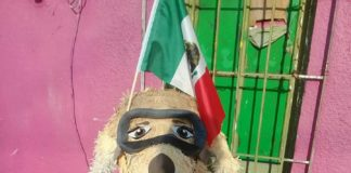 Frida piñata