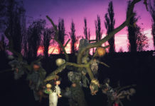 la Isla de las Muñecas en Xochimilco