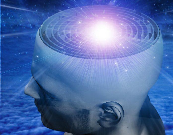 La conquista del cerebro