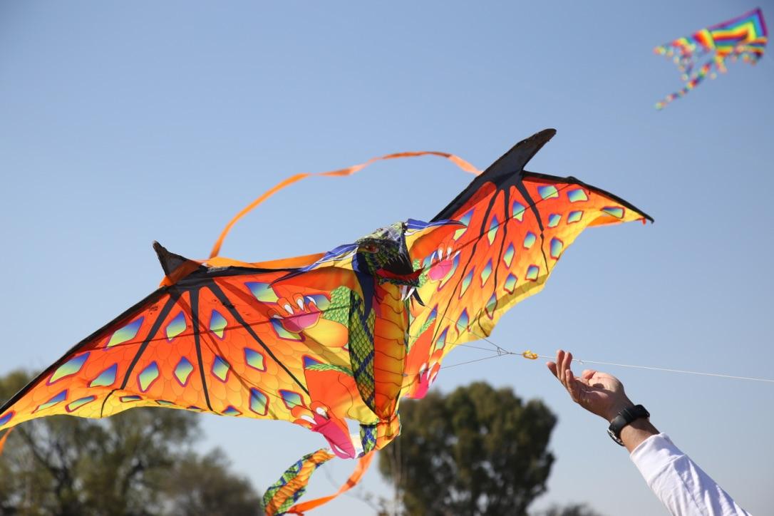 Lánzate Al Festival De Papalotes En Tequisquiapan