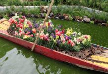 Festival flores y jardines 2018